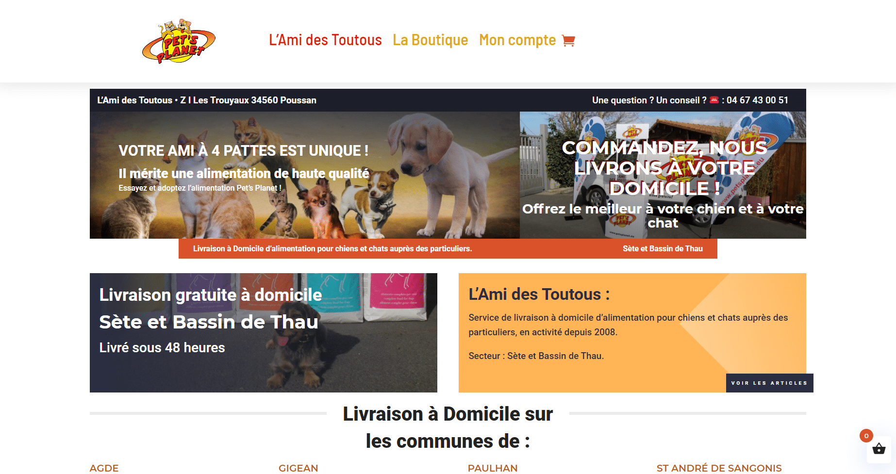 site e.commerce